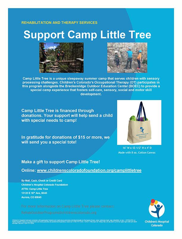 Help raise money for Camp Little Tree