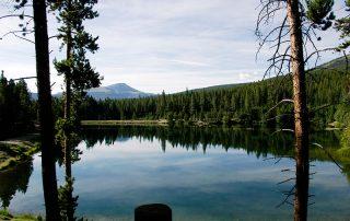 Scott Griffith Lodge Lake View