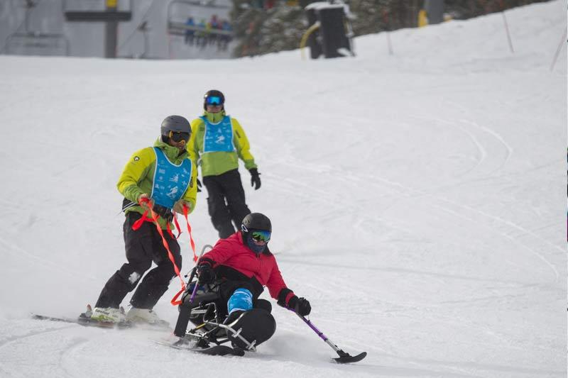 Adaptive Bi-Ski