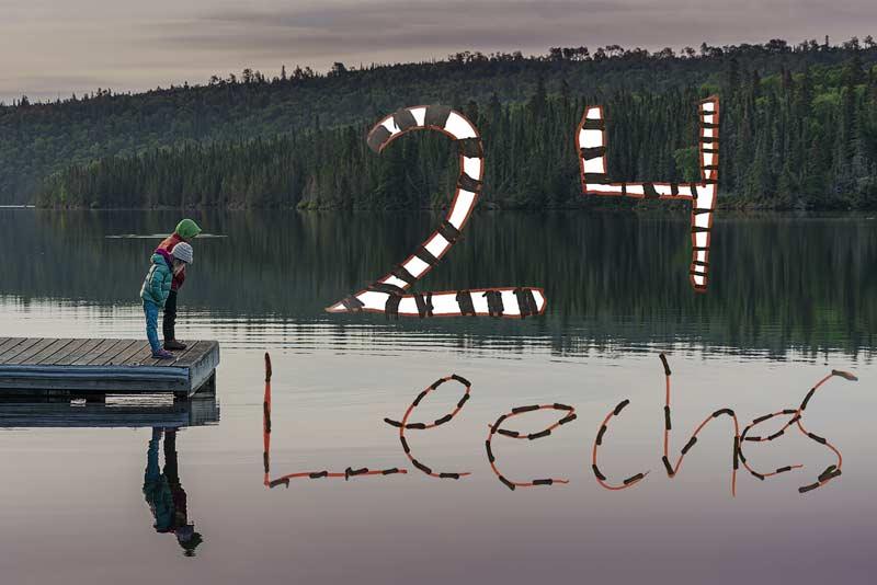 24 Leeches